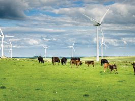 Integrated farm management: transforming sustainability in agriculture