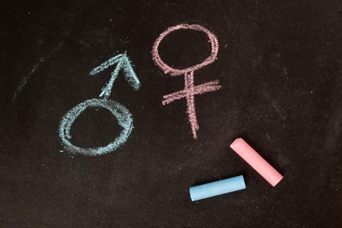 gender in stem