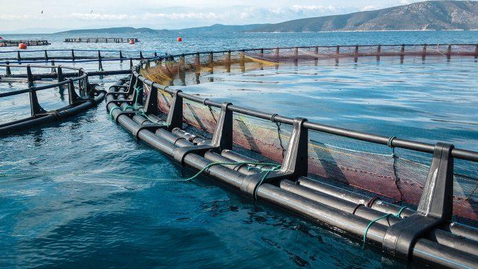 Aquaculture licensing