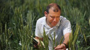 crop innovation