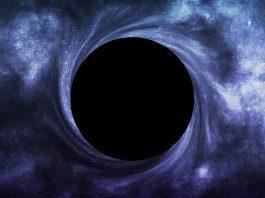 Black hole simulations