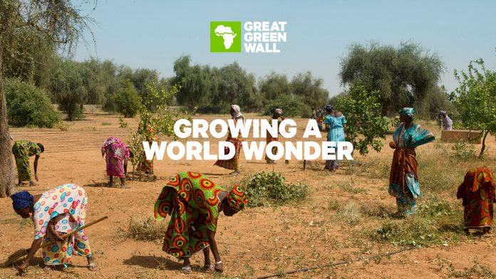 The Great Green Wall: Protecting Sahel through science-led intervention