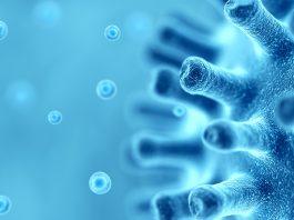 wasrtewater-based epidemiology