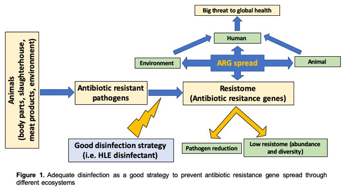 Reducing the spread of multidrug-resistant bacteria