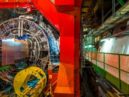 Large Hadron Collider beauty