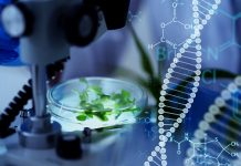 gene therapy treatment