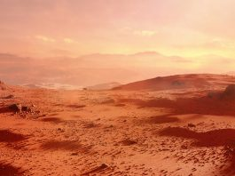 Mars' subsurface holds the right conditions for microbial life