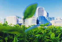 Pollinators key to fighting climate change and creating green cities