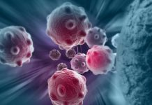 Groundbreaking CLEAR study will facilitate electron-based cancer therapy