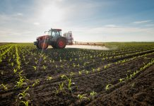 Developing organic nitrogen fertiliser to enhance agriculture production